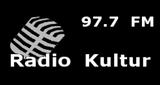 Radio Kultur